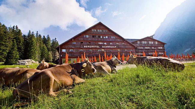 Кантон Аппенцель Ауссерроден, Восточная Швейцария, достопримечательности региона, @ zurichguide.ru, myzurich.org
